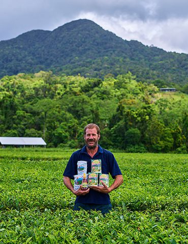 Daintree Food Trail Daintee Tea
